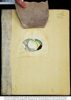 НОМЕР [Number] 1971 №. 31